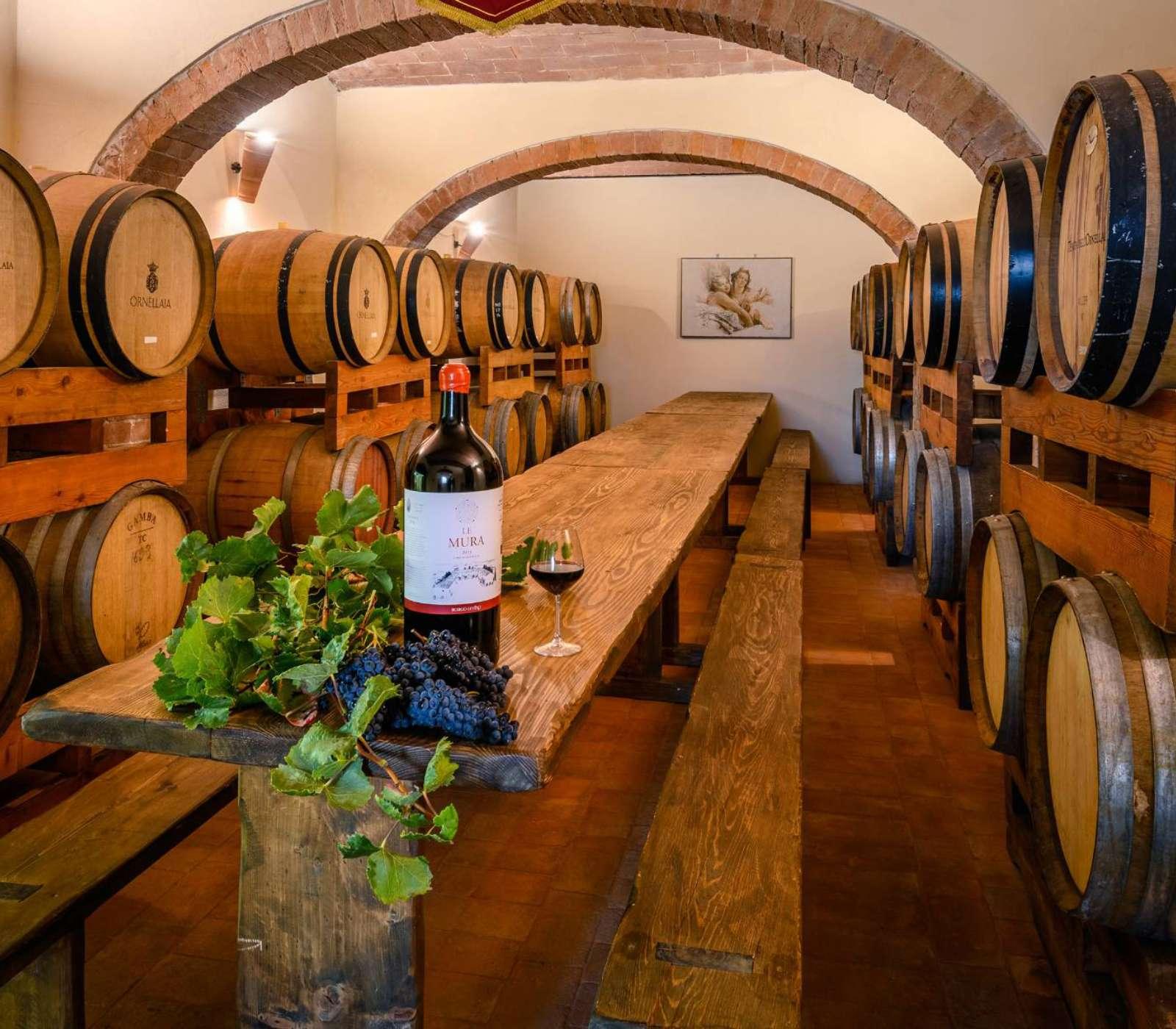 cellar in Chianti                  - img 2